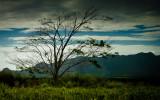 Landscape of Kauai (1), Hawaii