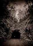 Wilcox Tunnel, Sugar Mill, Kauai, Hawaii