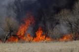 Burning Off the NWR
