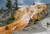 Yellowstone N. P.  July-2007