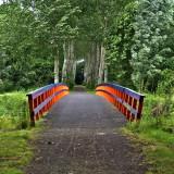bridge and wind