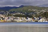 Wellington as seen from Petone