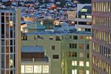 Wellington by night (ii)