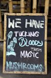 We have fucking bloody fresh magic mushrooms