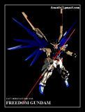 Bandai's Master Grade Freedom Gundam