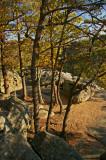 Boulders on eagles nest