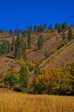Eagle Creek, Washington