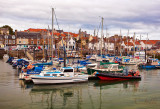ANSTRUTHER HARBOR_8264.jpg