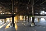 Under the Oceanside Pier