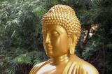Japanese Style Buddha Statue