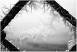 Hoar frost fence, version 2.