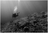Underwater light rays.