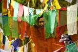 Pemba among prayer flags