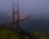 Disappearing into the foggy night