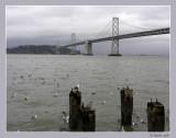 Bay Bridge on a gray day