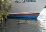 Two Georges.JPG