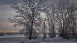 Scène hivernale au bord du fleuve