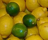 Citron - Limette