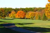 _Michigan Fall Color 2012