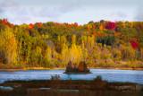Michigan Fall Color 2012