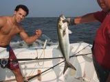 Fishing & Football 2006