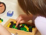 2009-01-27 Mousetrap game