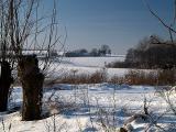 2006-01-28 Snow