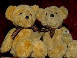 2006-02-02 Two bamselajser