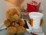 2008-02-19 Teddy