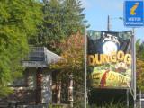Dungog Film Festival 2010 & 2011