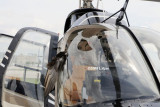 2008 - N407TT midair collision with a large bird photo #0188
