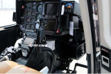 2008 - N407TT midair collision with a large bird photo #0190