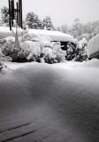 Our Front Porch & Little House  (Snowstorm-121808-2.jpg)
