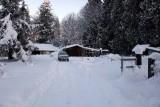 Snowstorm-122008-70.jpg