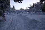 Snowstorm-122008-74.jpg