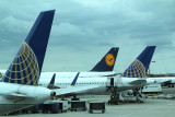 Continental (or United) tails flank Lufthansa tail in a cloudy EWR
