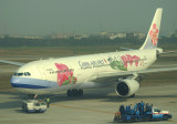 CI 330 in special orchard livery being pushed back from its gate at TPE