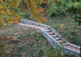 October & November 2008 - National Park Seminary Ruins, Warren Zevon Tribute, Thanksgiving, and More