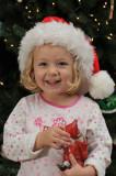Christmas Macey