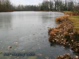 Frozen Lake Loramie ( Minster Branch )