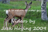Videos from our Glacier / Canadian Rockies Trip