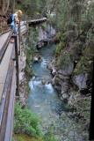 Day 7, Johnson Falls in Banff National Park