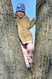Posing in a Tree
