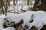 Snow on the Firewood