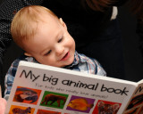A New Book for Camden's 1st Birthday