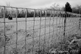 Heavy coated fence