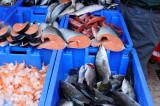 Tel Aviv - fresh fish at Carmel market