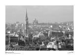 210 - Panoramic view from Museum of Music - Brussels_D2B3340-bw.jpg