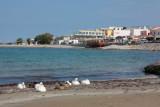 Crete IMG_3684.JPG