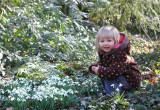 Emma and snowdrops.JPG